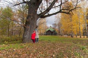 Поездка в пушкинскую осень