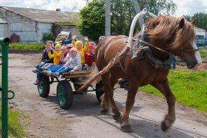 Поездка с детьми: кормление лошадок и валяние валенок